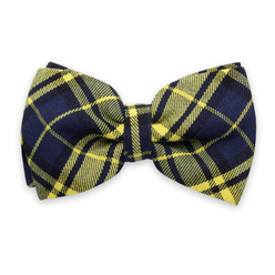 Men's braces in dark blue and blue-yellow bow tie11327, Willsoor